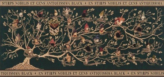 генеалогическое древо блэков
