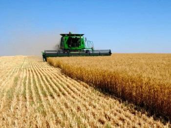 Сельскохозяйственный единый налог